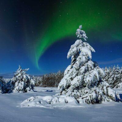 English to Finnish and Finnish to English Translations
