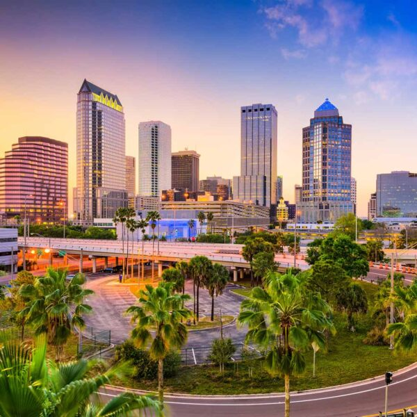 Tampa translation services in Florida
