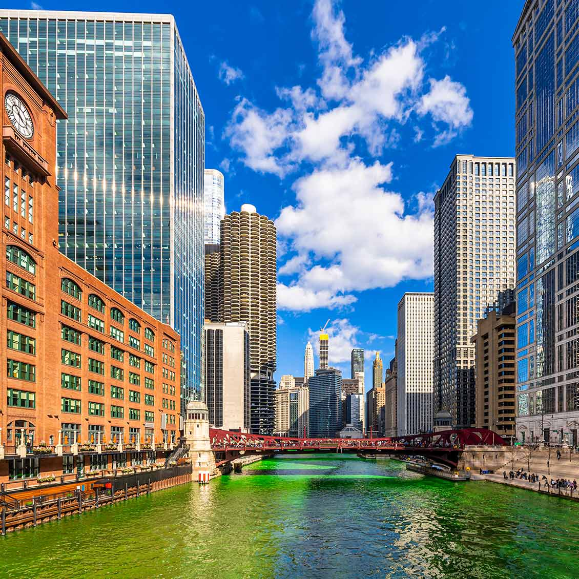 Chicago Translation Services in Illinois