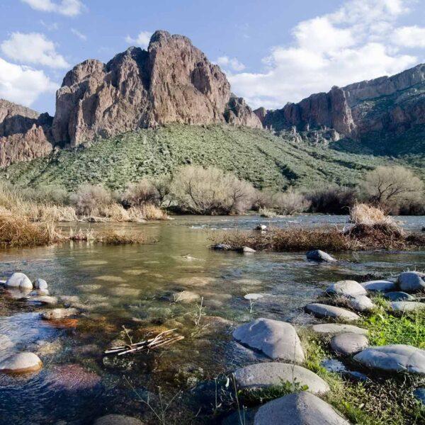 Phoenix Translation Services in Arizona